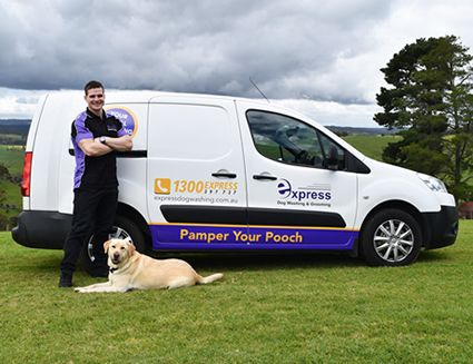 Mobile Dog Grooming Business For Sale Brisbane