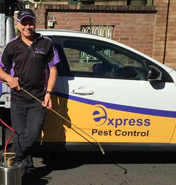 pest control franchise for sale expresspest control business for sale
